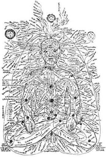 Map of the nadis and chakras